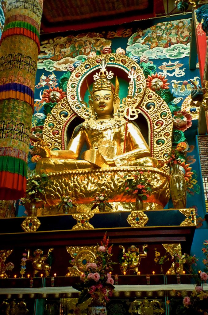 Buddhism: A Brief Look Into the Religion